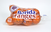 Florida Oranges Poly